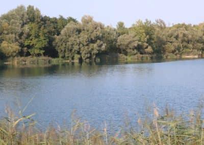 Vogelsee