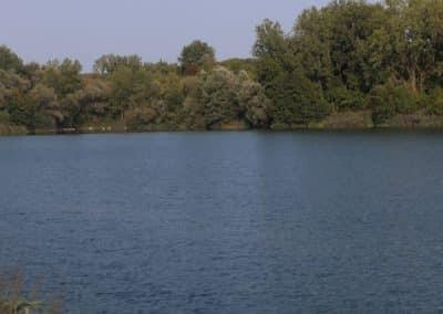 Vogelsee Söllingen