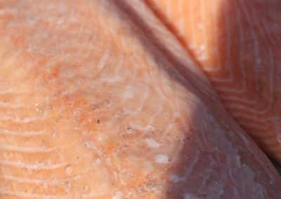 lachs-catering